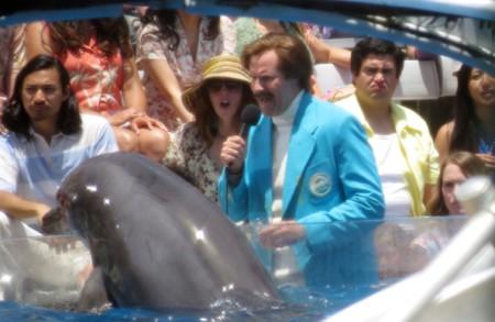 San Diego: A Dolphin's Vagina!